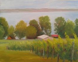 vinyard view